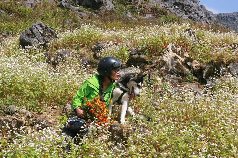 Cô gái 9X đưa chó đi phượt 'gây sốt' cộng đồng mạng