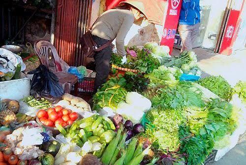 rau quả, rau quả nhiễm độc, rau quả an toàn, kích phọt, thuốc bảo vệ thực vật