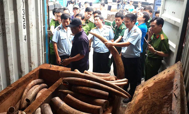 Hà Nội: Thiêu đốt hơn 70 kg sừng tê giác