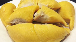 Sầu riêng đắt nhất thế giới, nhà giàu Việt ăn đều