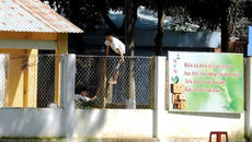 2 người cầm đầu vụ 195 người nghiện trốn trại bị bắt
