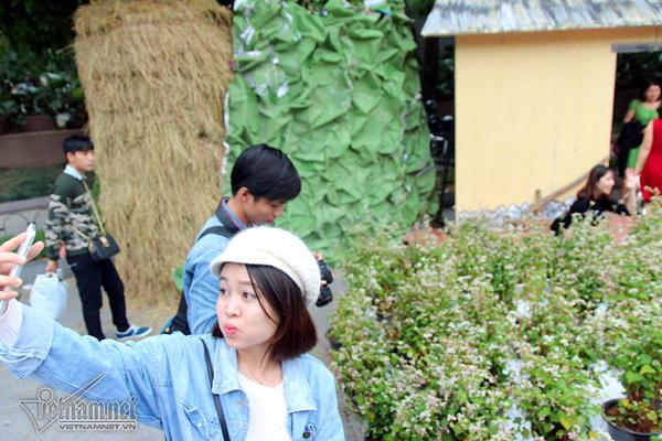 Selfie bên rừng hoa tam giác mạch giữa Hà Nội