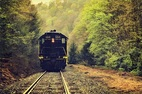 Cứu em bé trên đường ray, lái tàu nhận quyết định kỷ luật
