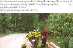 Phượt thủ hái hoa dã quỳ chất đầy xe không quan tâm dân mạng nói gì