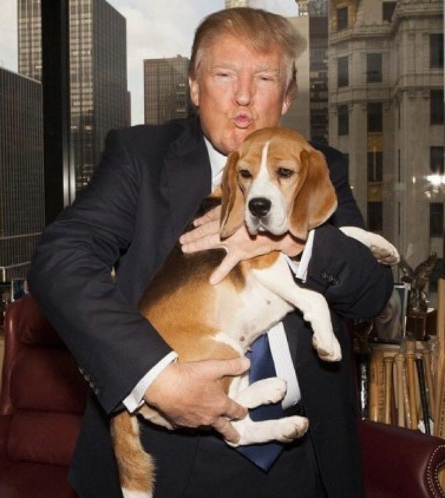 """Bí ẩn """"Đệ nhất thú cưng Nhà Trắng"""" tương lai"""