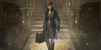 Ngỡ ngàng trước thế giới phù thuỷ huyền bí của J.K.Rowling ngày trở lại