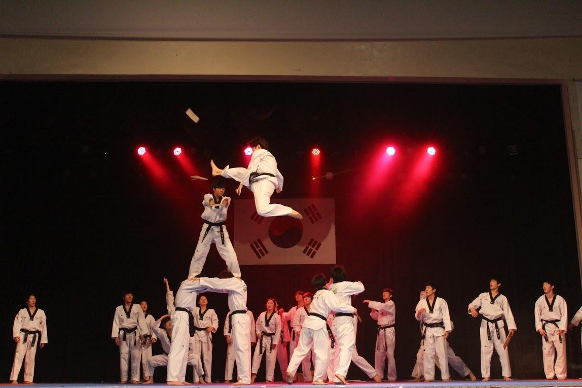 Hạnh Sino biểu diễn trong Lễ hội Văn hóa Hàn Quốc