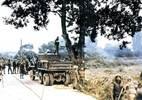Hàn, Triều suýt chiến tranh vì chuyện chặt cây