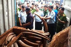 Lập chuyên án triệt phá mua, bán động vật hoang dã