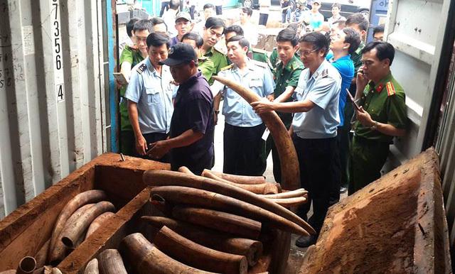 Trương Hòa Bình, Phó Thủ tướng Trương Hòa Bình, mua bán động vật hoang dã, ngà voi