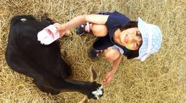 Bé gái 10 tuổi hỏi hoàng tử Anh cách bảo vệ động vật