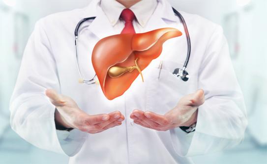 Giảm tải cho gan, không lo viêm gan B