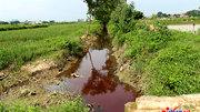 Vi phạm về môi trường có thể bị phạt 2 tỷ đồng