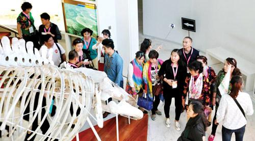 2016 - bước chuyển mình mạnh mẽ của du lịch Quảng Ninh