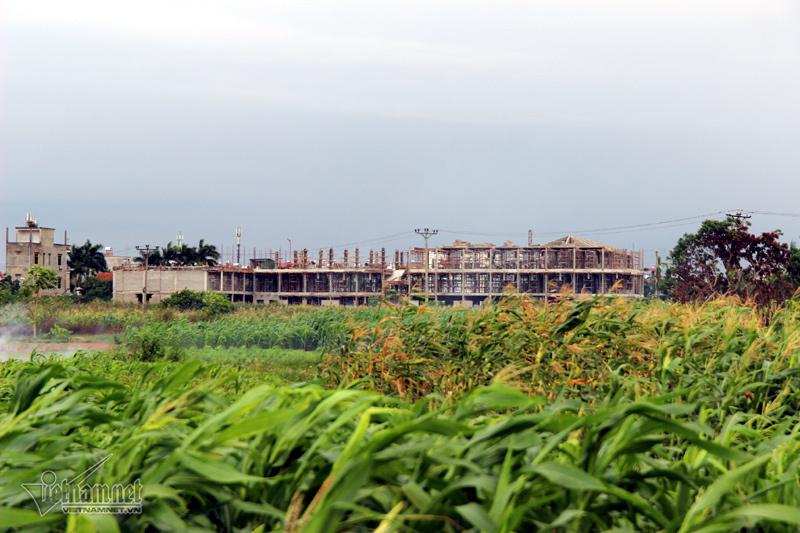 Hà Nội: Tạm dừng di dời hơn 2.000 mộ về sát nách dân