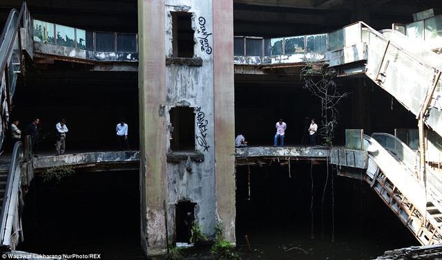 Lạ lùng 'ao cá' hàng nghìn con trong trung tâm thương mại bỏ hoang