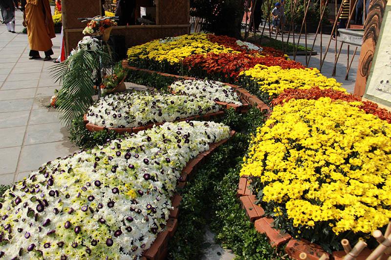 3 lễ hội hoa tuyệt đẹp ở Quảng Ninh