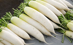 Chớ dại ăn củ cải trắng với những loại này