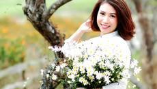 Các điểm chụp ảnh cúc họa mi tuyệt đẹp ở Hà Nội