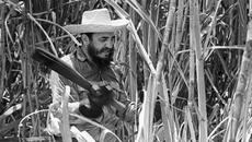 Nhớ lần chặt mía cùng lãnh tụ Fidel Castro