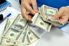 Ba tháng thức đêm, bí quyết vợ chồng trẻ kiếm 2.000 USD tiêu Tết