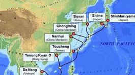 CMC Telecom chính thức khai thác tuyến cáp biển APG
