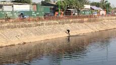 Hà Nội: Cướp xong lao xuống sông tẩu thoát