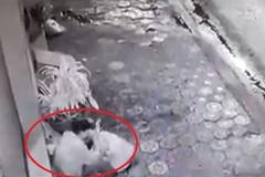 Người đàn ông nhặt mỳ trong đống rác để ăn và cái kết đầy bất ngờ