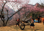 Những điểm đến khiến du khách 'mê tít' trong dịp Tết Dương lịch