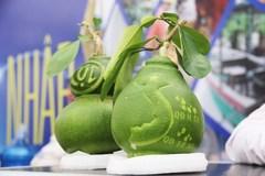 Nông dân ăn Tết 400 triệu nhờ bưởi Tân Triều