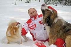 Nhật muốn tặng cún cưng cho Putin, Nga từ chối