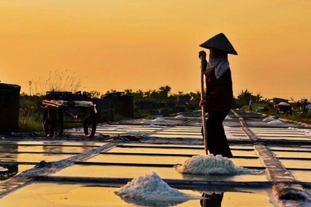 Ngỡ ngàng với vẻ đẹp của những cánh đồng muối Việt Nam