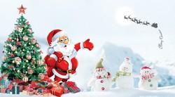 Noel - Giáng Sinh 2016