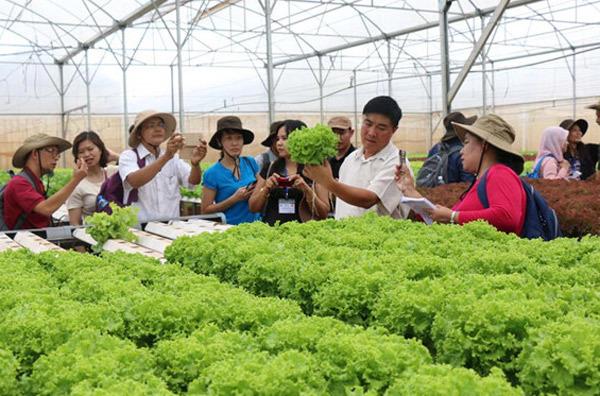 Ứng dụng công nghệ cao nâng tăng giá trị nông sản Việt Nam