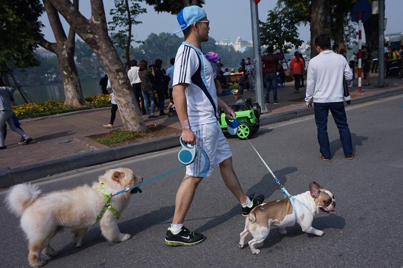 Chết khiếp với chó không rọ mõm dạo phố đi bộ