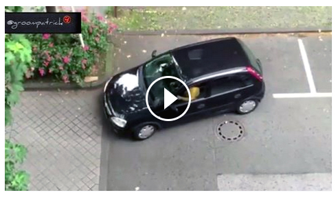 Màn lùi xe của người phụ nữ khiến tất cả bật cười
