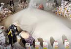 Xuất khẩu gạo giảm kỷ lục trong vòng 10 năm qua