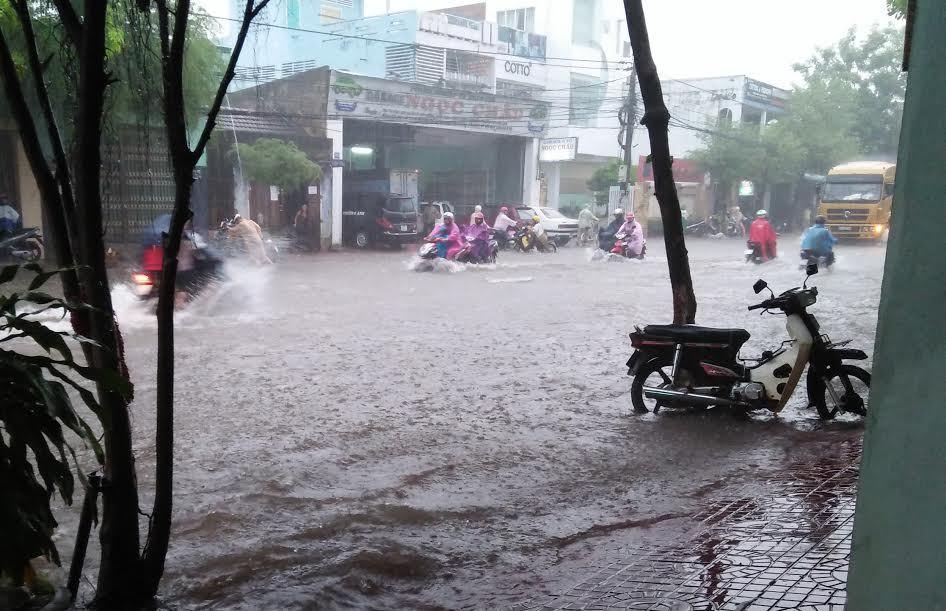 Phó chủ tịch Bình Định: 46 hồ chứa nước đe dọa vỡ