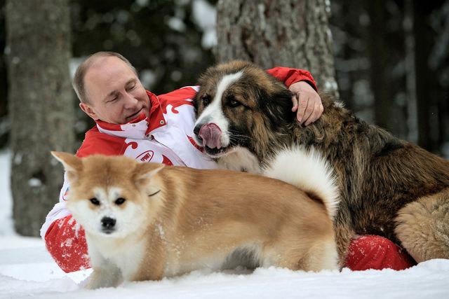 Người nổi tiếng thế giới chăm thú cưng có gì lạ?