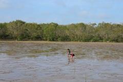 Hấp dẫn vẻ hoang sơ của biển Mỏ Ó và Hồ Bể