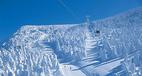 """Khu rừng """"Quái vật Tuyết"""" tại Nhật Bản hút khách du lịch"""