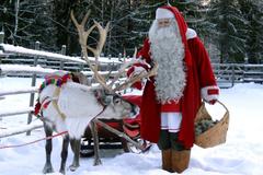 Vì sao đàn tuần lộc của ông già Noel đều là con cái?
