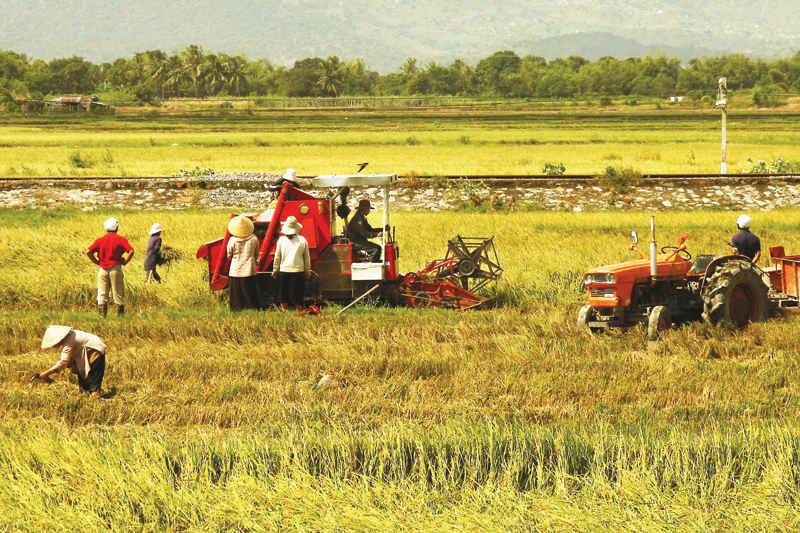Trụ đỡ dìu Việt Nam vượt ra khủng hoảng