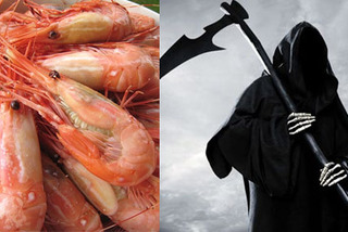 Tôm cá Trung Quốc nhiễm độc: Nỗi lo toàn cầu
