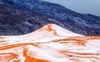 Hy hữu ngắm tuyết rơi trên... sa mạc Sahara
