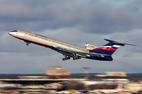 Máy bay Nga gặp nạn có thể do chim