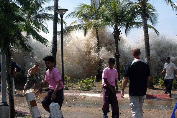 12 năm sau sóng thần, 400 thi thể vẫn chưa có tên