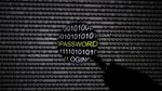 Tin tặc tuổi teen tự nhận hack hệ thống cấp Visa của Nga