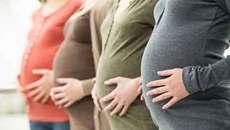 Chấn động Hà Lan: Hàng loạt phụ nữ bị bơm nhầm tinh trùng