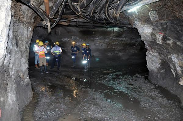 Sau nợ thuế trăm tỷ, mỏ vàng lớn nhất VN ngừng hoạt động